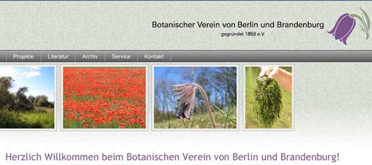 botanischer-verein-brandenburg.de